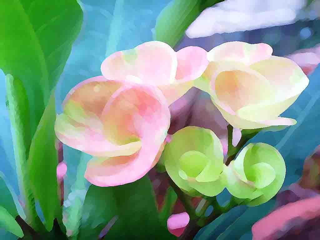 Flowers ledia runnels exploration of art related articles izmirmasajfo